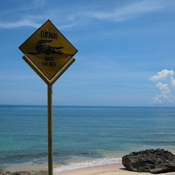 EAST TIMOR: Coping with Crocs and Other Hazards