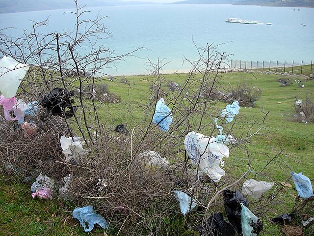 TUNISIA: Hug Your Trash Collector