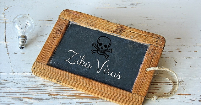 BRAZIL: Zika Virus – Weighing On The Minds Of Moms