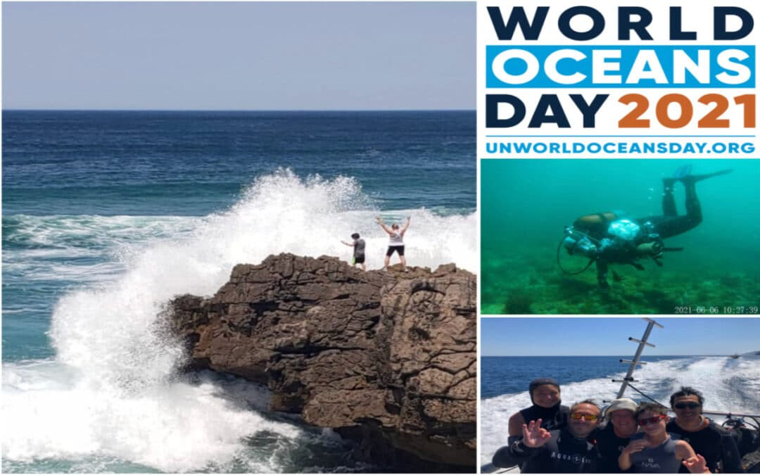 Above and Below: Celebrating on World Oceans Day