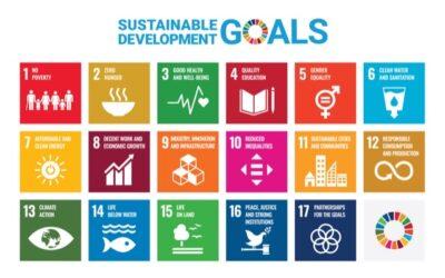World Moms for Sustainable Development Goals